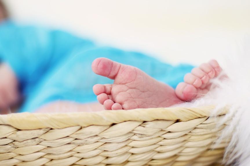 Bebés molones